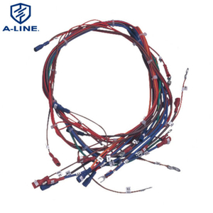 Delivery on Time Customized Auto Wire Harness Assembly