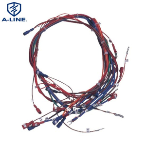 Motorcycle Assembly and Child Car Combination Wire Harness